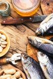 Посоленные рыбы и пиво Стоковая Фотография