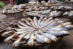 посоленные рыбы Стоковое Фото