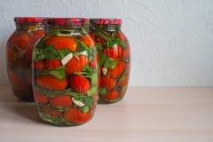 Посоленные томаты в стеклянном опарнике домашняя консервация стоковые фото