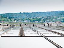 Посолите лотки sicciole, Pirano, Словении, Европы Стоковое Изображение RF