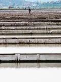 Посолите лотки sicciole, Pirano, Словении, Европы Стоковое Фото