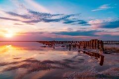 Посолите пруды испарения морской воды с розовым цветом планктона стоковая фотография