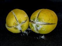 2 посоленных лимона готового для того чтобы сохранить Стоковое Изображение