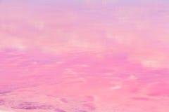 Посолите пруды испарения морской воды с розовым цветом планктона стоковое изображение