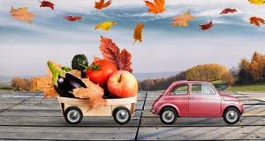 Поставка еды осени Стоковые Фото