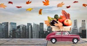 Поставка еды осени Стоковое фото RF
