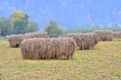 поставка Стог сена-зимы стоковые изображения