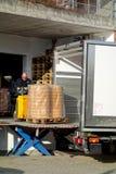 Поставка швейцарского сыра стоковое фото