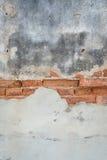 Постаретая бетонная стена с старой предпосылкой кирпичей Стоковое Изображение RF