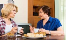 2 постаретая женщина с чашкой чаю обсуждая что-то Стоковое Изображение