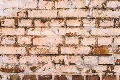 Постаретая кирпичная стена grunge Стоковые Изображения