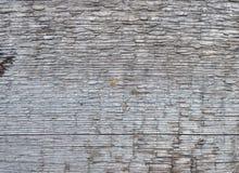 Постаретая серая деревянная текстура доски Стоковое фото RF