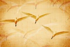 постаретая холстина птиц Стоковая Фотография