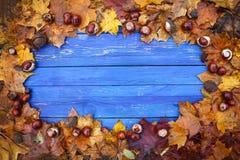 Постаретые голубые доски в рамке сухих коричневых листьев каштана и зрелых каштанов или hippocastanum Aesculus приносить Стоковое Изображение
