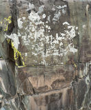 Постаретый камень с мхом, отказами и картиной утеса Стоковые Изображения RF