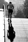 постаретый мост пересекая среднего бегунка Стоковое Изображение RF