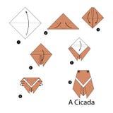 Постепенные инструкции как сделать цикаду origami Стоковая Фотография RF