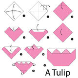 Постепенные инструкции как сделать origami тюльпан Стоковая Фотография RF