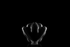 Поступок человека Стоковое Фото