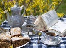 Послеполуденный чай в саде стоковые фото