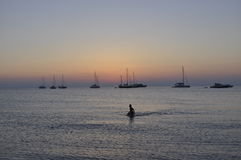 Последний заплыв дня Стоковые Фотографии RF