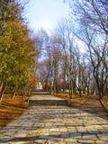 Последний парк зимы, Kamenets Podolskiy, Украина Стоковые Изображения RF