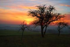 Последний солнечний свет Стоковая Фотография RF