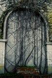 Последняя дверь Стоковая Фотография