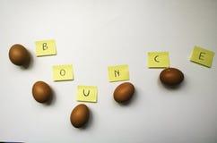 Последовательность прыжока 5 яичек в ряд Стоковое Фото