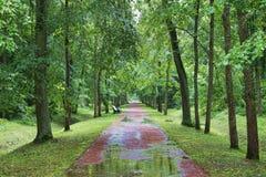 После дождя Oranienbaum Россия Стоковые Фотографии RF