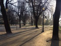 После полудня в парке Стоковая Фотография RF