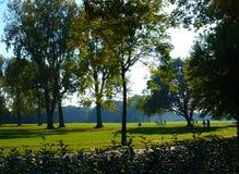После полудня в парке Стоковое фото RF