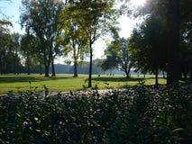 После полудня в парке Стоковые Изображения RF