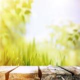 После полудня лета красоты Стоковое Фото