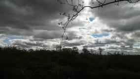После шторма Стоковые Изображения RF