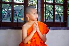 Послушник в Таиланде, молодой монах стоковое изображение rf