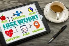 Потеряйте диаграмму концепции веса с родственными элементами стоковые изображения rf