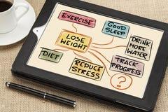 Потеряйте принципиальную схему веса стоковое изображение