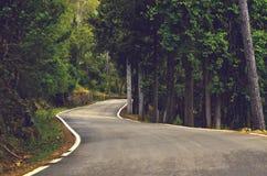 Потерянная дорога Стоковая Фотография RF