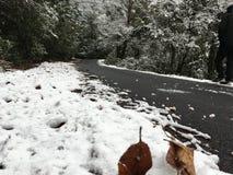 потерянная дорога Стоковое фото RF