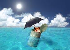 потерянное море Стоковые Фото