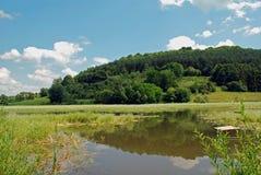 потерянное озеро пущи Стоковые Изображения
