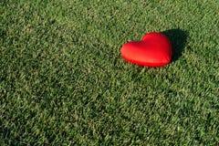 Потерянное сердце стоковые фотографии rf