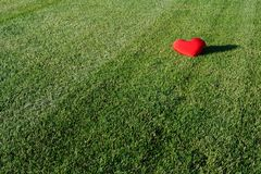потерянное сердце Стоковое Фото