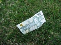 потерянные деньги Стоковое Фото