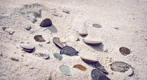 потерянные деньги Стоковое Изображение RF