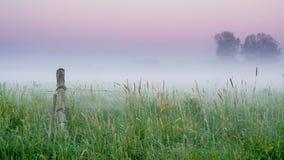 Потерянный в природе Стоковая Фотография