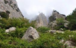 Потерянный мир, окруженный туманом Стоковые Изображения RF