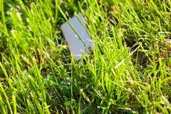 Потерянный мобильный телефон в зеленой траве стоковое фото