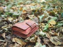 Потерянный оранжевый бумажник Стоковое Изображение